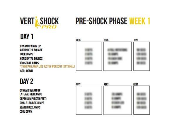 vert-shock-free-pdf